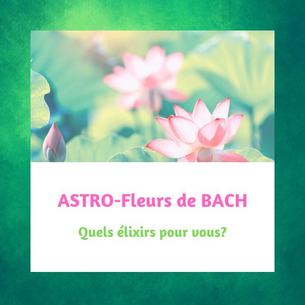 Élixirs Fleurs de BACH Astrologiques par Mademoiselle Lili